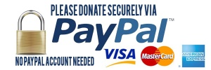 Paypal-link1